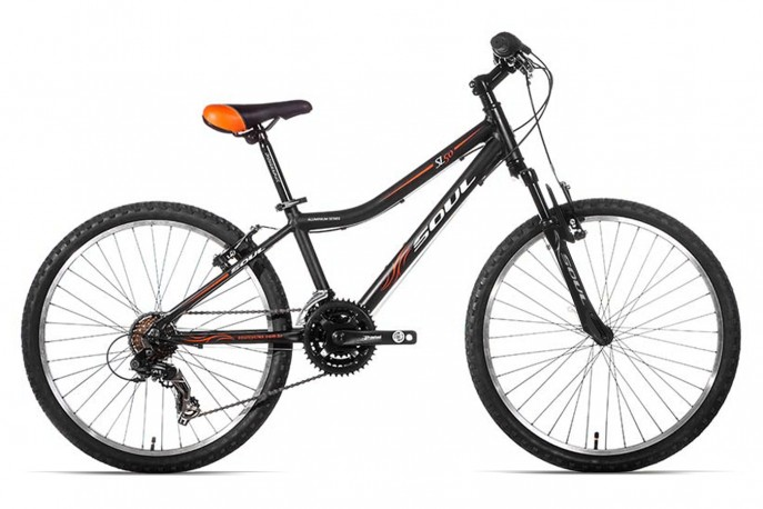 Bicicleta 24 Masculina SL 50 21V - Soul