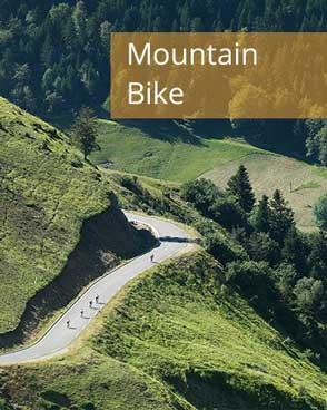 bike-mtb.jpg